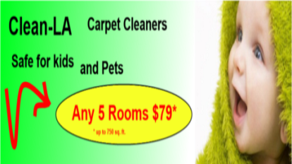 carpet-cleaning-coupon-offer-safe-for-kids-480-by-270