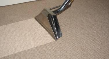 carpet-pic