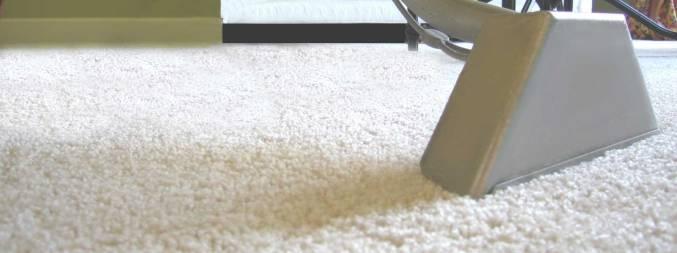 carpet-wand