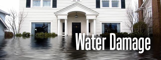 Water Damage Repair Torrance